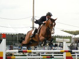 Stock-Bay Grand Prix Jumper by TopDeckPhotography