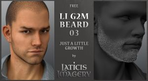 Laticis Imagery FREE - Genesis 2 Male Beard 03 by Laticis
