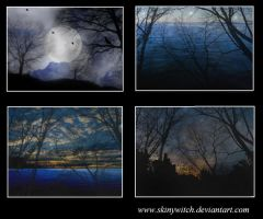 Landscapes by skinywitch