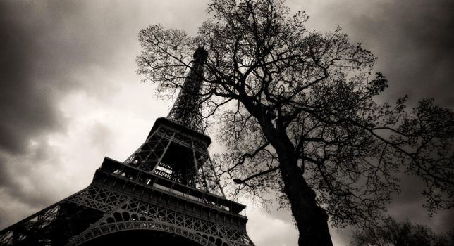 tree and tower... by denis2