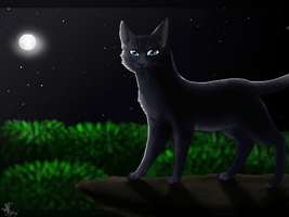 Bluestar :Redraw: by eliza1star