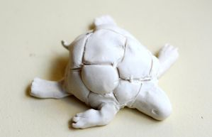 Old Clay Turtle I Made by caseycole11