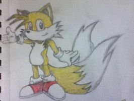 Tails by Smiggels