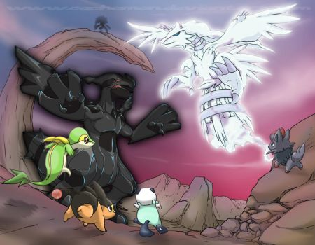 Zekrom and Reshiram appear by Cachomon