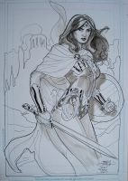 Wonder Woman San Diego 2010 by TerryDodson