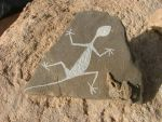 Lizzard Petroglyph by Roadstead