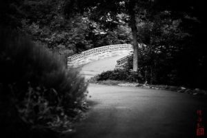 Path by juhitsome