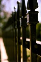 Fence by BowsNBears