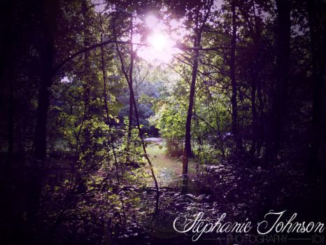 The Woods by Stephymonsta