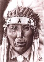 Cheyenne Chief by ArtsandDogs