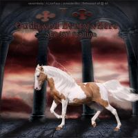 Outlawed-Everywhere by Behooved