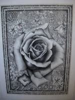 Rose for my Mom--pen and ink by thetammy