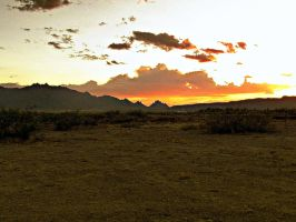New Mexico Sunsets by whendt