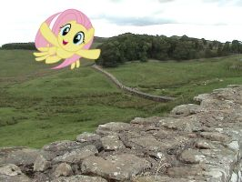 Fluttershy flying over Hadrian's Wall by laopokia