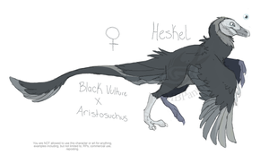 Heskel Ref by MBPanther