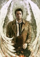 spn2 by Gregory-Welter