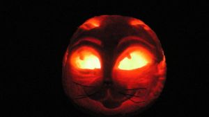 Halloween  Cat Pumpkin Carving by Randomshadowmusic