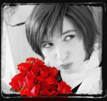 APH - red flowers by Sellheim