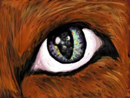 Griffin Eye by genericwolfname