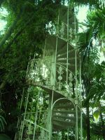 stairwell to the canopy by thequietcontemplater