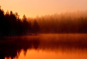 autumn morning by KariLiimatainen