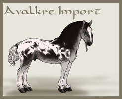 Avalkre Horse Import 12 by ReaWolf