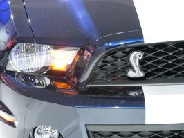 2010 Shelby GT500 headlamp by Qphacs