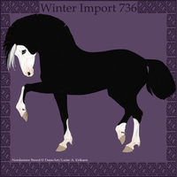Winter Import 736 by Psynthesis
