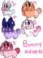 Bunny adopts by MoonFennec