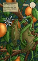 Orange Blossom - WonderCon 2012 Exclusive Print by Nightlyre