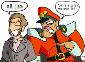 M. Bison meets M. Bison by BrokenTeapot