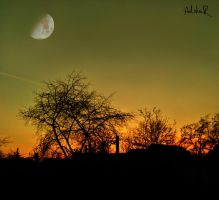 to the moon by ad-shor