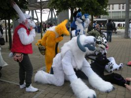 Fursuit meet by DawnKestrel