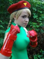 Cammy: Stand Tall by ToxicRainbowsx