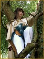 Saiyuki: Monkey in a tree by cayra