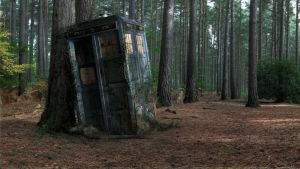 Tardis in the woods by xht8311