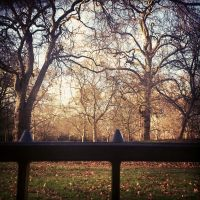 Hyde Park by amyjls