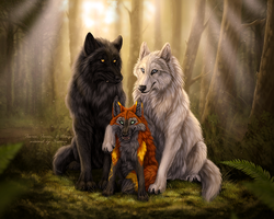 Pack Portrait by Sidonie
