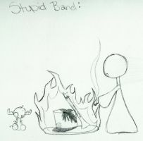 Stupid Band... by PhishPhace