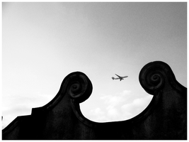 plane over evening sky by geyl