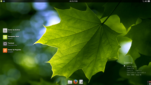 My XFCE, My Desktop III 13_06_14 =) by TerraToo