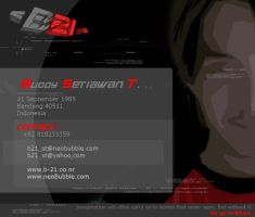Personal Data B21 by B21