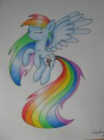 Rainbow Dash coloured drawing by haselwoelfchen
