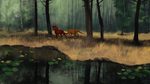 Rainy Forest Stroll by bolthound