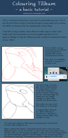 Tilikum Colouring Tutorial by SyKoticOrKa