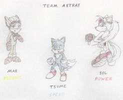 Team Astray by FallenAngelSefra