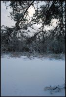 Winter Wonders II by Eirian-stock
