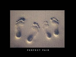 Perfect Pair by syeri