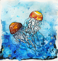 Sea Nettle by SunStateGalleries