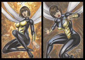 WASP PERSONAL SKETCH CARDS by AHochrein2010